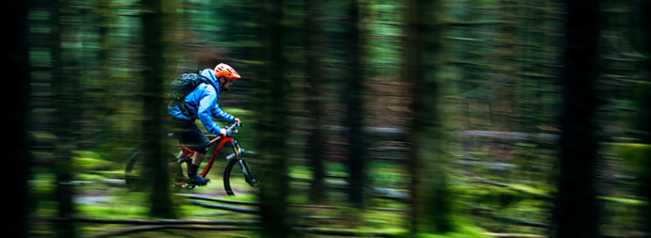 5 Reasons to Try Mountain Biking